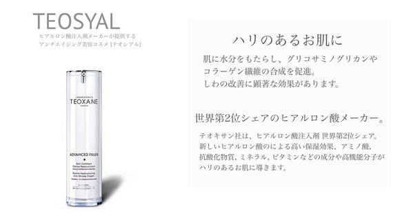 テオシアル 001.jpg